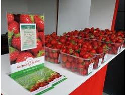 Sezoninis darbas pardavėjams Vilniuje (2)