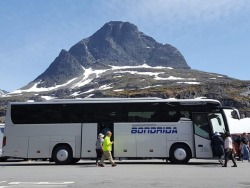 Turistinio autobuso vairuotojas (7)