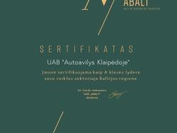 Darbas Automechanikui (3)