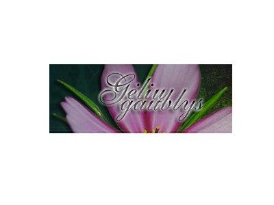 Darbas floristui (1)